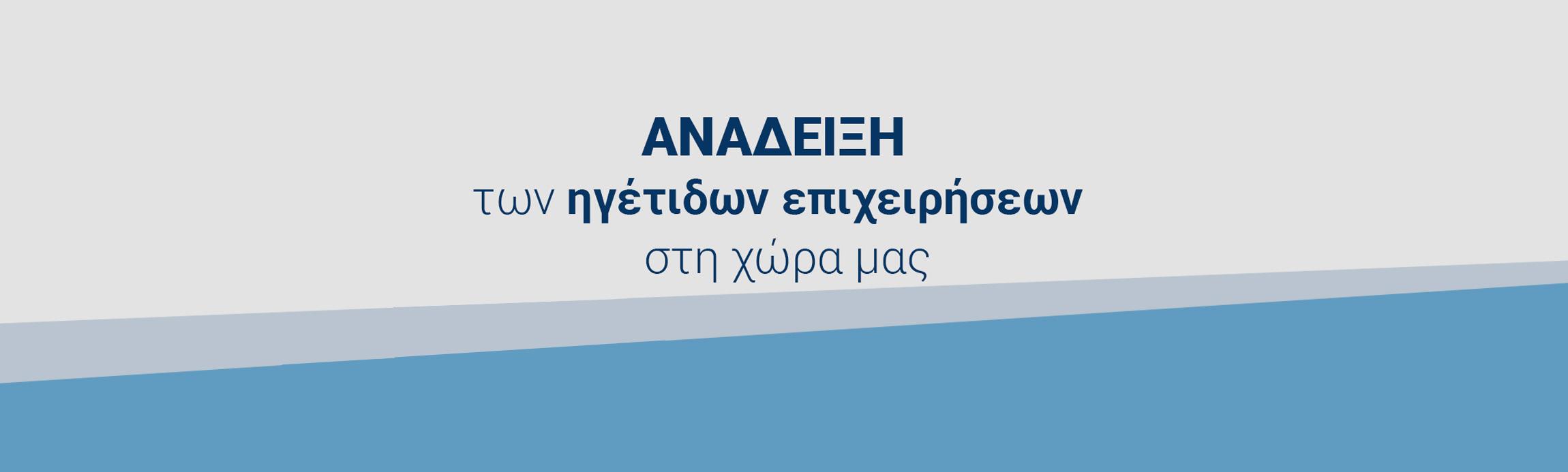 ανάδειξη των ηγέτιδων επιχειρήσεων στη χώρα μας